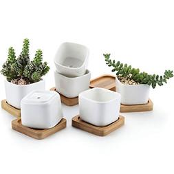 T4U 2 Inch Small White Succulent Planter Pots with Bamboo Tr